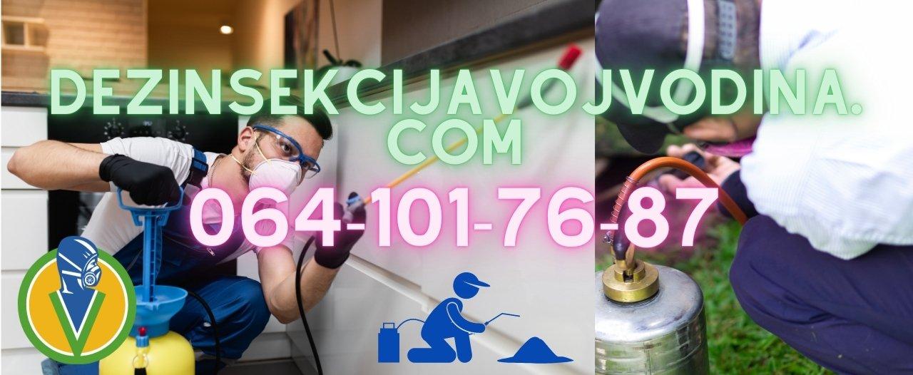 Deratizacija dezinsekcija i dezinfekcija ciklonizacija kuća stanova i lokala u Novom Sadu i Vojvodini po pristupačnim cenama i 100% efektivnost od strane starijih ddd tehnologa,Sertifikovana dezinsekcija i regulacija bubarusa smeđih i žutih u kuhinji i kupatilu,kanalizacionih crnih bubašvaba u kupatilu,mrava crnih standardnih,mrava sitnih žutih,krevetnih stenica koje ujedaju u krevetu tokom spavanja, buva od pasa i mačaka,krpelja u dvorištu placu i životnom objektu,moljaca u odeći tepihu garderobi,moljaca u kuhinji i namirnicama,smrdibuba na prozorima i mehanizmima roletni,komaraca,muva crnih standardnih,muva nestandardnih,paukova, žižak u drvetu, ose i gnedo osa,stršljeni i gnezdo stršljena,regulacija miševa pacova puhova i krtica vani i unutra,Dezinfekcioni tretman stanova kuća zgrada lokala protiv svih vrsta virusa i bakterija,Specijalističko čišćenje terasa tavana od golubova u zgradama i 100% humana zaštita od golubova,Sređivanje podruma i čišćenje podruma,Čišćenje stanova i lokala,Organizovanje sigurnih i odgovornih selidbi po tržišnim cenama,Sve vrste sertifikovanih majstorskih haus usluga od strane iskusnih proverenih i odgovornih majstora,DDD konsultacije i analitički sanitarni inženjering škola fakulteta državnih institucija fabrika radnih pogona vrtića pekara restorana hotela apartmana i hostela od strane iskusnih sanitarnih inženjera biologa i ddd tehnologa,,15+ godina radnog iskustva,starije edukovano iskusno i sertifikovano radno osoblje.
